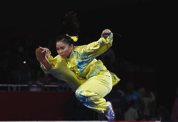 Wushu – 2018 Asian Games – Women's Taijiquan