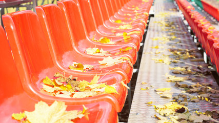 Side view of rows of red color chairs with yellow autumn leaves on them.