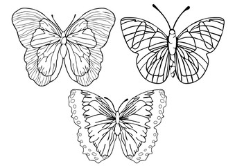 Butterflies outline set, coloring, linear drawing, silhouette, sketch, contour vector black and white illustration. Butterfly view from above isolated on white background, insect hand drawing, print