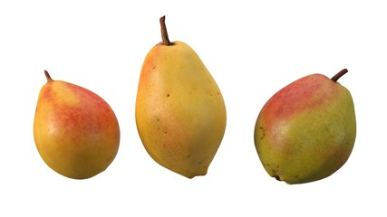 free falling pears isolated on white. realistic 3d illustration