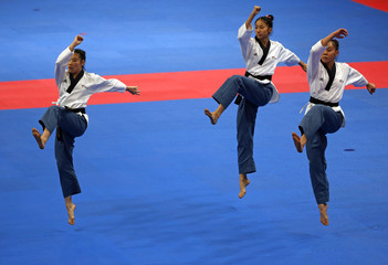 2018 Asian Games – Taekwondo