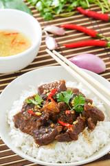 Delicious Vietnamese Caramelized Pork Recipe