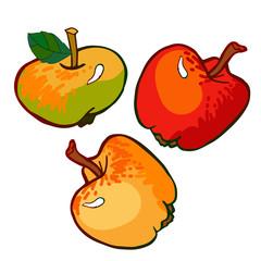 fresh juicy apples set