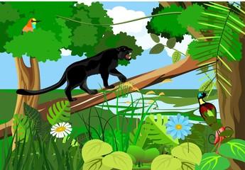 Jungle wildlife nature landscape background, vector illustration, panther, bird