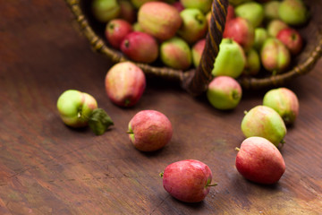 close up apple bon a background of blurred basket full of fresh harvest of sweet ripe garden apples