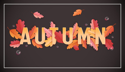 Autumn Background Template with Beautiful Leaves and Raindrops, Fall Illustration with Paper Art for Web Banner, Card Template, Wallpaper, Cover, Invitation in vector