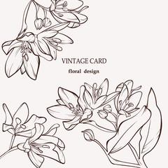 vintage card zveroboy 1000