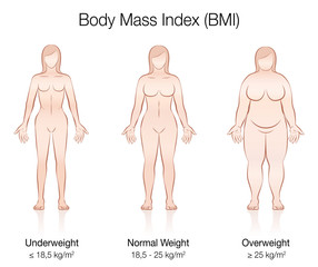 Body Mass Index BMI. Underweight, normal weight and overweight female body. Isolated vector illustration of three women with different anatomy.
