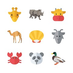 9 animal icons set