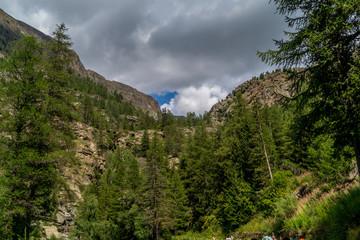 Mountain Panorama on summer