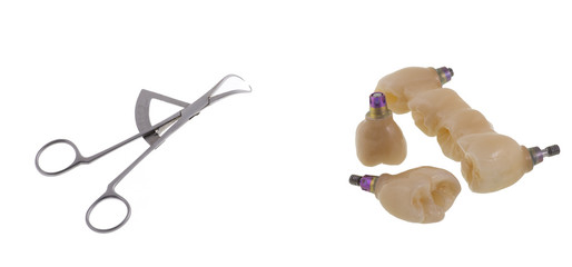 Tooth human implant. Dental concept. Dental caliper on white background. This instrument has calibrated scale and is used to measure the size of teeth. Closeup