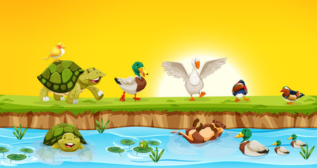 Different animals in pond scene