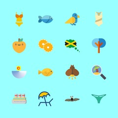 16 tropical icons set