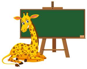 A giraffe and blank blackboard