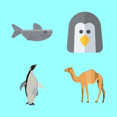 animals vector icons set. shark, penguin, penguen and camel in this set