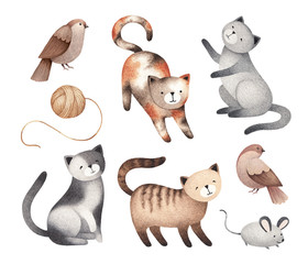 Watercolor illustrations of cute cats, mouse, birds