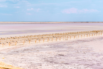People gathering salt of pink salty Siwash Lake, colored by microalgae, famous for antioxidant properties,
