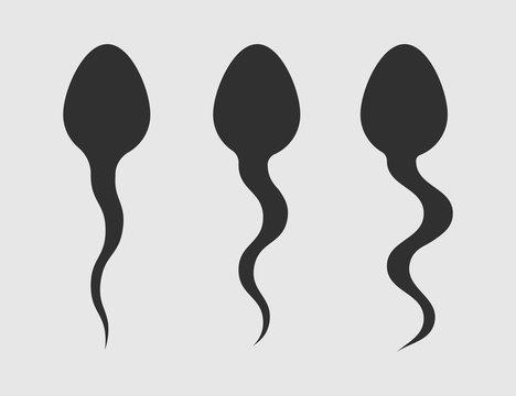 Spermatozoon icon isolated on white background. Vector illustration.