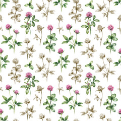 Illustrations of clover flowers. Seamless pattern