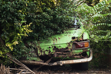 Rusty car wreck in the woods looking from behind