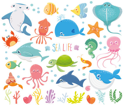 Set with funny sea animals. Marine life. Ocean wildlife. Cute illustration.Vector collection