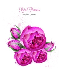 Rose flowers watercolor wreath Vector card. Beautiful blooming flowers decors isolated on whites