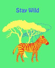 Quotes Poster with Zebra Savanna Animal