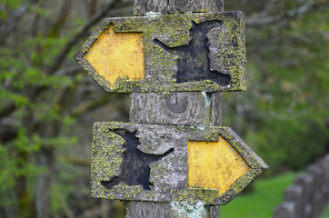 Moss-covered wooden signs along the Pendle Witches Trail in Lancashire with witches silhouettes conveying contradictory information