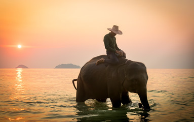Koh Chang, Thailand. 02-Feb-2018. Man riding an elephant in the ocean during sunset