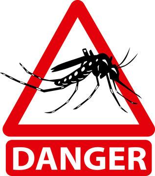 moustique tigre, moustique