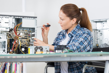 female motherboard assembler