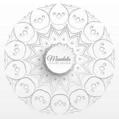 elegant indian mandala pattern background