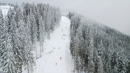 Skiers and snowboarders go down the slope in a ski resort Bukovel, Ukraine