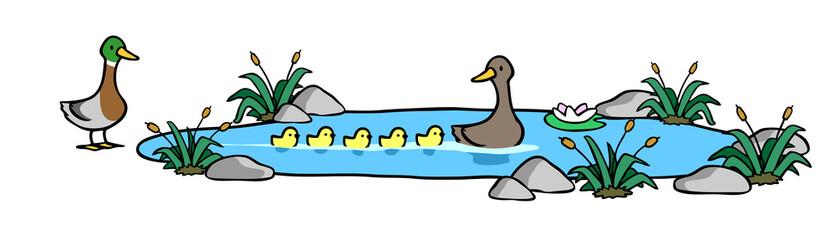 Ente mit fünf Küken schwimmt im Teich
