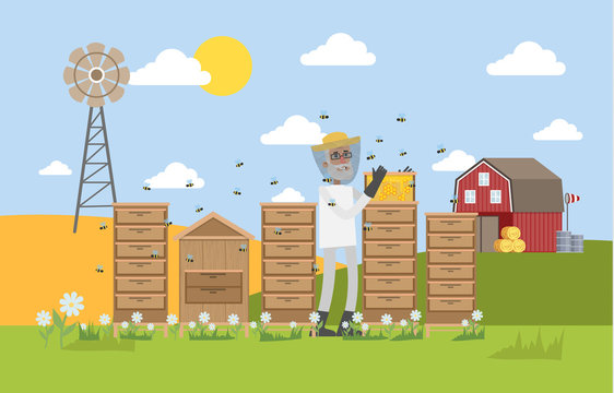 Beekepeer standing in apiary and collecting honey