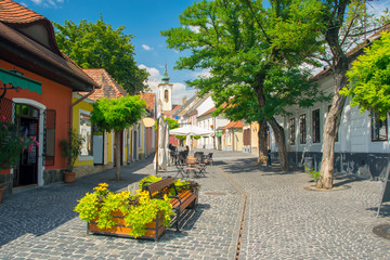 Scenic view of old town of Szentendre, Hungary at sunny summer day Wall mural