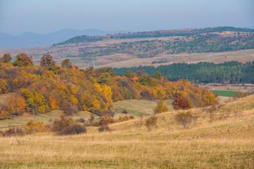 Autumn scene in the mountains
