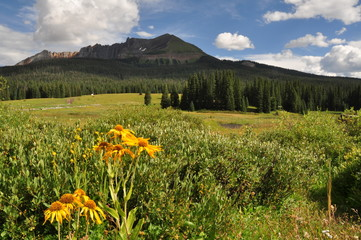 Lizard Head Pass, San Miguel Valley, near Ouray and Telluride, Colorado