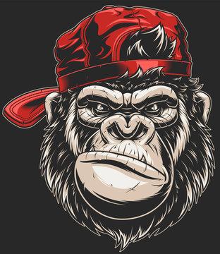 Monkey's head in a baseball cap