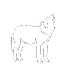wolf howls, image lines, vector