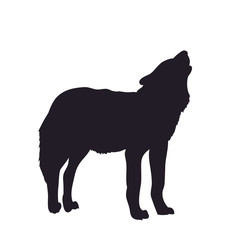 wolf howls, image silhouette, vector