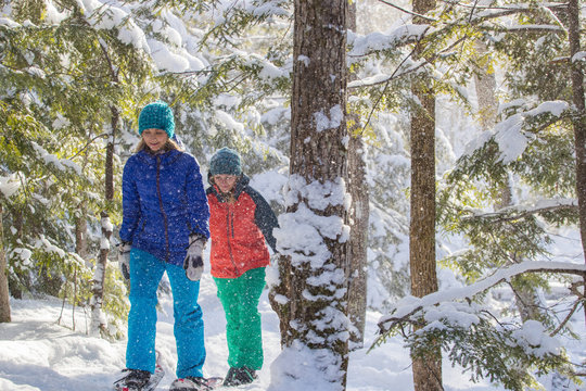 Pair of female friends snowshoeing in forest.