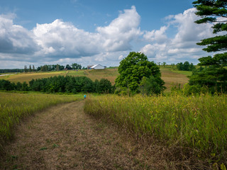 dirt path through grassy hills