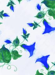 blue flower vine