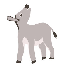 burro   cartoon vector illustration flat style front