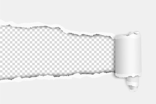 Torn elongated hole in white sheet with wrapped paper tear and transparent background of resulting window. Vector template paper design.