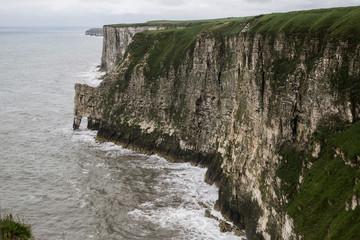 Bempton Cliffs in England