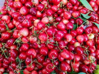 Bright red, ripen and juicy cherries. Rich in Nutrients. Good source of vitamin, antioxidant and anti-inflammatory compounds. Help lower the risk of heart disease. Healthy eating and eat well concept.