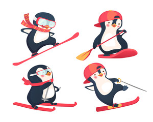 active penguins in winter and summer set