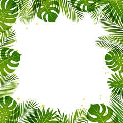 Summer frame of palm leaves. Tropical plants. Vector illustration.